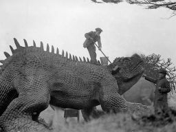 A model of a prehistoric animal at Crystal Palace, London, is given its annual scrub by one of the exhibition staff standing on its back and using a broom in February 1927.